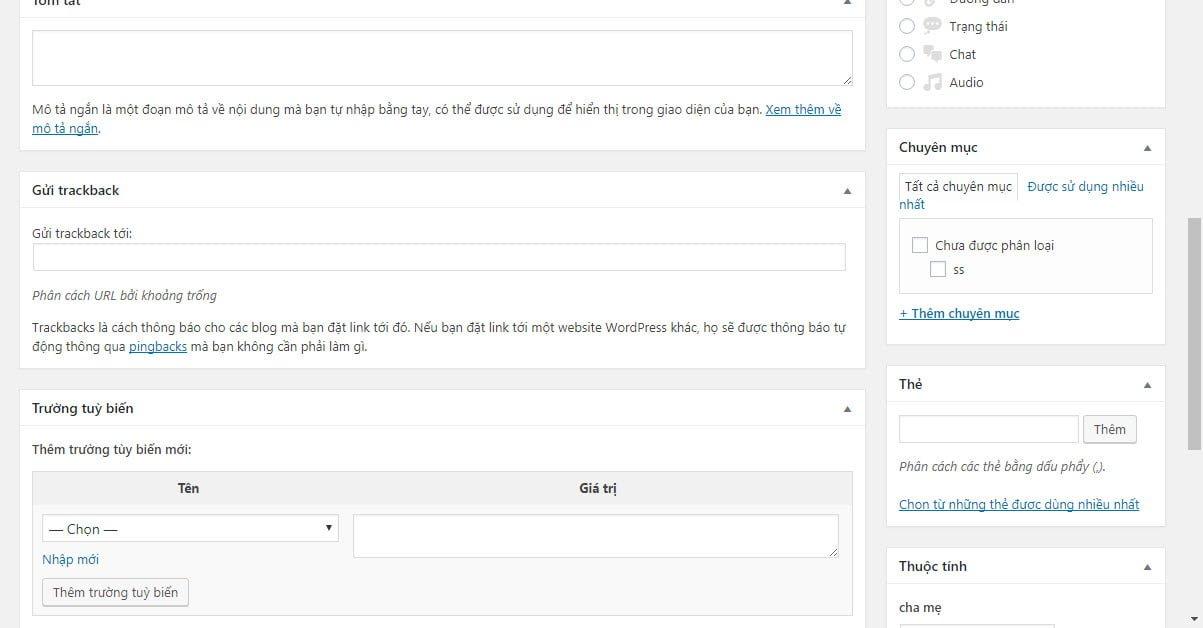 Phần biên tập nội dung của custom post type mới (2)