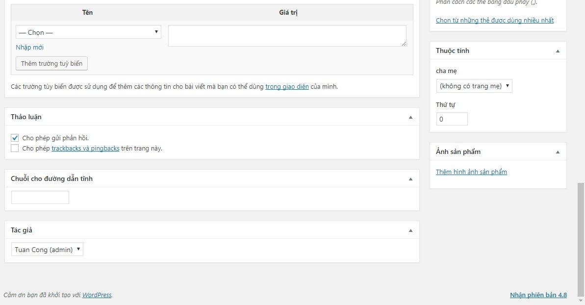 Phần biên tập nội dung của custom post type mới (3)