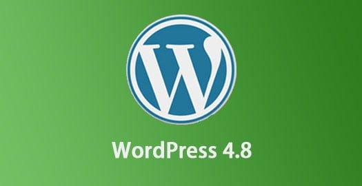 WordPress 4.8 hỗ trợ thêm nhiều loại widget đặc biệt