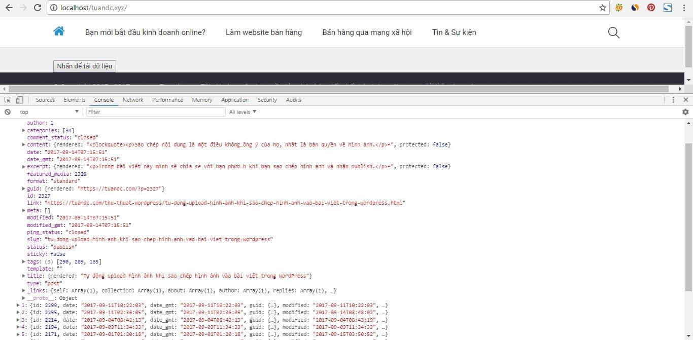 Dữ liệu được trả về từ REST API