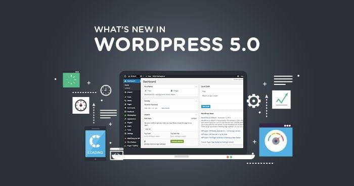 WordPress 5.0 đã chính thức được cập nhật